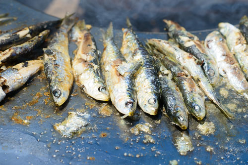 Sardines cooked simply on the hot plate